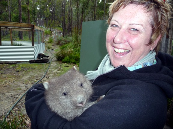 and here's a wombat ... but what's that little furry creature?